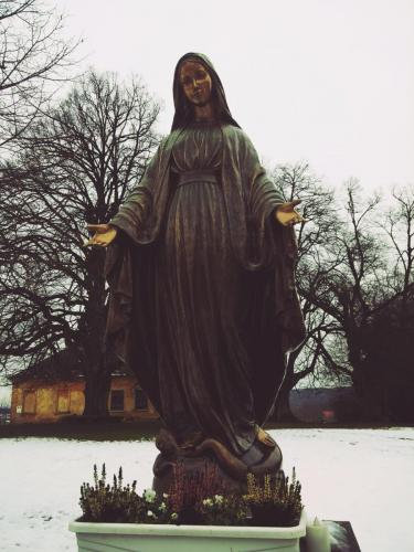 Marijin kip